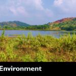 Serene Environment of OCeAn Vaidyashaala